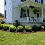 Augusta County: Planted and mulched
