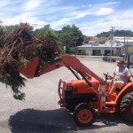 Cleaning up a local Staunton, Virginia business.