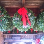 Christmas wreaths.
